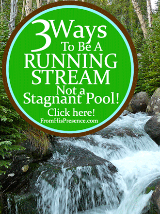 Are You a Running Stream or a Stagnant Pool? by Jamie Rohrbaugh, FromHisPresence Blog