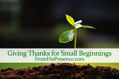 giving thanks for small beginnings