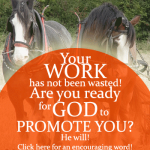 Your work has not been wasted! Are you ready for God to promote you? An encouraging word on the FromHisPresence blog!