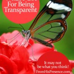 What I Got For Being Transparent - it may not be what you think!
