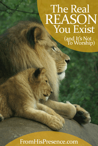The Real Reason You Exist (and It's Not To Worship). You were made to be with God in love.