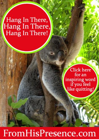 Hang In There, Hang In There, Hang In There! by Jamie Rohrbaugh   FromHisPresence.com Blog