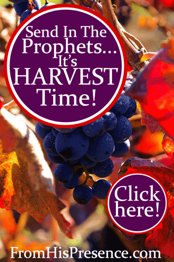 Send In the Prophets; It's Harvest Time! by Jamie Rohrbaugh | FromHisPresence.com blog