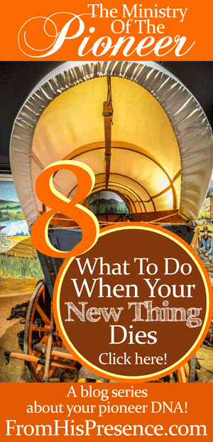 What to do when your new thing dies. Part 8 of the Letters To Pioneers series by Jamie Rohrbaugh   FromHisPresence.com