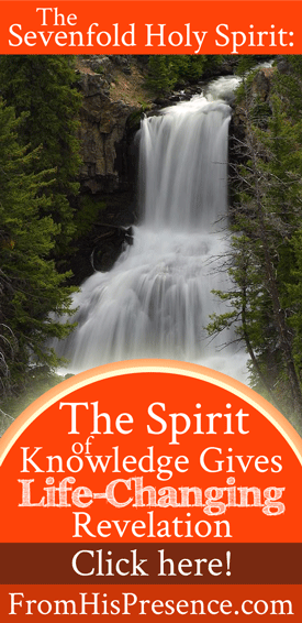 The Sevenfold Holy Spirit: The Spirit of Knowledge Gives Life-Changing Revelation | by Jamie Rohrbaugh | FromHisPresence.com