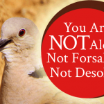 You-Are-Not-Alone-Not-Forsaken-Not-Desolate-forFB
