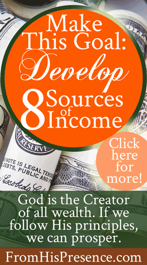 Make This Goal: Develop 8 Sources of Income | by Jamie Rohrbaugh | FromHisPresence.com(R)