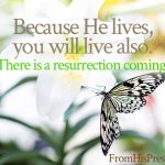Because He lives you will live also | Resurrection