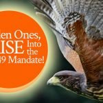 Hidden Ones, Arise Into the Isaiah 49 Mandate! Prophetic word by Jamie Rohrbaugh | FromHisPresence.com